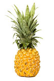 Pineapple. Whole Pineapple in white Stock Photo