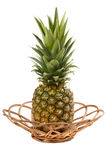 Pineapple in wicker Royalty Free Stock Images