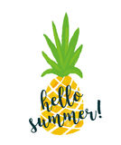 Pineapple With Text `Hello Summer`. Ananas Summer Background.
