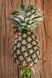Pineapple on the wood Stock Image