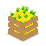 Pineapple in wooden crate Royalty Free Stock Image
