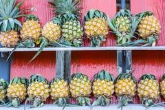 Pineapple on wooden stall Stock Photos