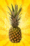 Pineapple on yellow spiral Stock Image