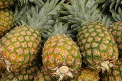 Pineapples. At open air market royalty free stock photos