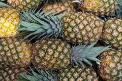 Pineapples. Market stall offering fine ripe pineapples Royalty Free Stock Photo