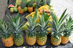 Pineapples at a fruit stand Royalty Free Stock Photos
