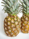 Pineapples. Two pineapples Royalty Free Stock Photos