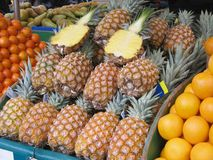 Pineapples. Pile of Pineapples at farmers market Stock Image