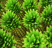 Pineapples background Stock Images