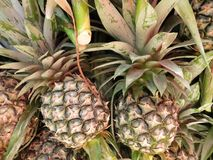 Pineapples. Cart of pineapples Stock Photography
