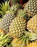 Pineapples closeup Royalty Free Stock Photos