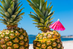 Pineapples with cocktail umbrella Stock Photography