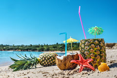 Pineapples and coconuts by the shore on a clear summer day Royalty Free Stock Photo