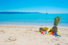 Pineapples and coconuts by the shore Royalty Free Stock Photo