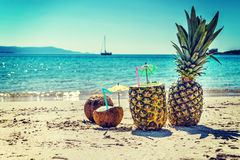 Pineapples and coconuts in vintage tone Stock Images