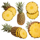 Pineapples collection. Fresh pineapple fruits with cut and green leaves isolated on white background stock image