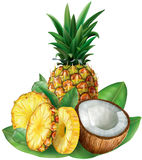 Pineapples and cut coconut Royalty Free Stock Photography