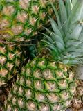 Pineapples. Detail of pineapples in the market Stock Photos