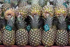 Pineapples on display in store Stock Images