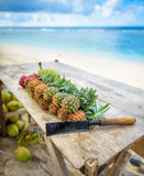Pineapples,dragon fruit and coconuts with machete 2 Royalty Free Stock Image