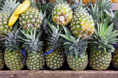 Pineapples in foodstore Royalty Free Stock Images