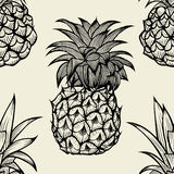 Pineapples hand drawn sketch Royalty Free Stock Photos