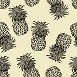 Pineapples hand drawn sketch Stock Image