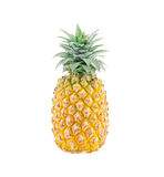 Pineapples isolate on white Stock Photography