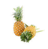 Pineapples isolate on white Stock Image