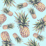 Pineapples on a light blue background. Watercolor colourful illustration. Tropical fruit. Seamless pattern Royalty Free Stock Images