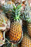 Pineapples in the market Stock Photo