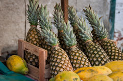 Pineapples in the Market Royalty Free Stock Photography