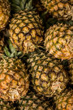 Pineapples on the market Stock Image