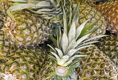 Pineapples in a market Stock Photos