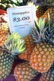 Pineapples At The Markets Stock Photography