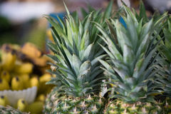 Pineapples in a Mexican market Royalty Free Stock Photography