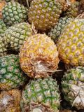 Pineapples, Moorea, French Polynesia Stock Photos