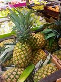 Pineapples and other fruits. Fresh pineapples, green apples, lemons and other fruits in the market Stock Image