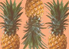 Pineapples Pattern on Pink Background in Summer Concept royalty free stock photos