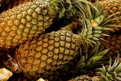 Pineapples Stock Image
