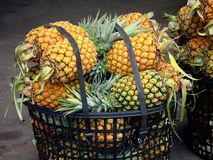 Pineapples for Sale Royalty Free Stock Photography