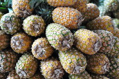 Pineapples for sale in Costa Rica Stock Photos