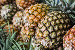 Pineapples. For sale in fresh fruit market Royalty Free Stock Image