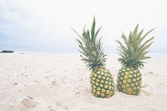 Pineapples on sandy beach Stock Photo