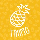 Pineapples on seamless pattern Stock Photo