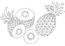 Pineapples sketch Royalty Free Stock Images