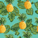 Pineapples and Tropical Leaves Background Stock Photos
