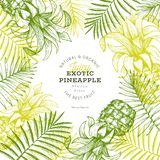 Pineapples and tropical leaves design template. Hand drawn vector tropical fruit illustration. Engraved style ananas fruit banner. Vintage botanical frame royalty free illustration