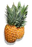 Pineapples. Two tropical and fresh pineapples on white background Stock Photo