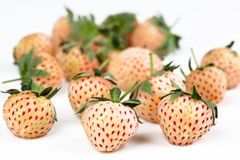 Pineberries Royalty Free Stock Image